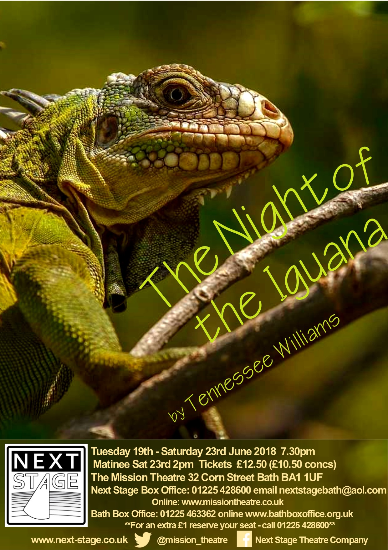 Night of the Iguana draft poster 2.jpg