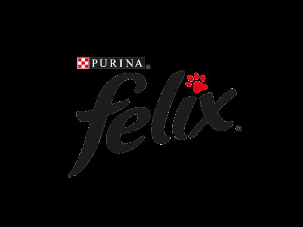 EF Felix logo transparent small.png