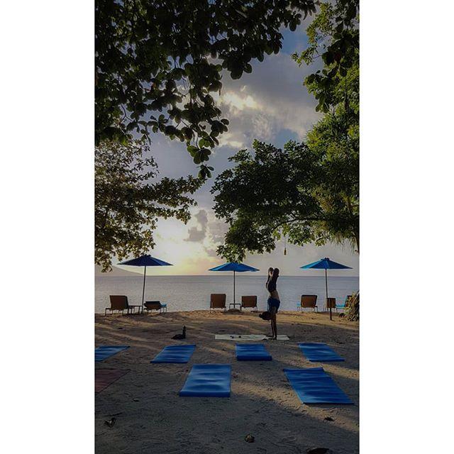 Pree-class playtime is one of my absolute favorite moments, always gets me so full of energy and pumped to teach :) Right now the added perk of a beach sunset in a national marine park makes it even better 😁 ~ 📸@michaelasflow ~ ~ ~ #ElgerydMovement #inversion #projecthandstand #practiceplay #armbalance #handstand #handstandvariation #balancepose #balancetraining #balance #liforme #ninjapants #pimovement #pimovementninja #yoga #yogasweden #boysofyoga #yogadudes #travelyoga #yogatravel #ytt #yogaindonesia #yogateacher #movementculture #liforme #lotus #lotushandstand  #urdvapadmasana