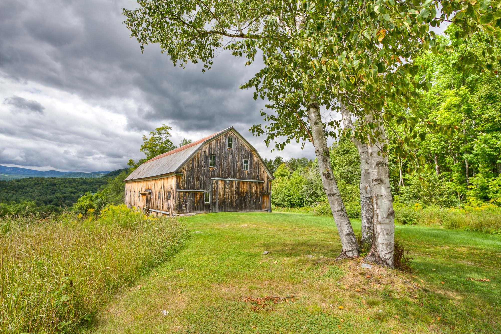 Barn & Birches
