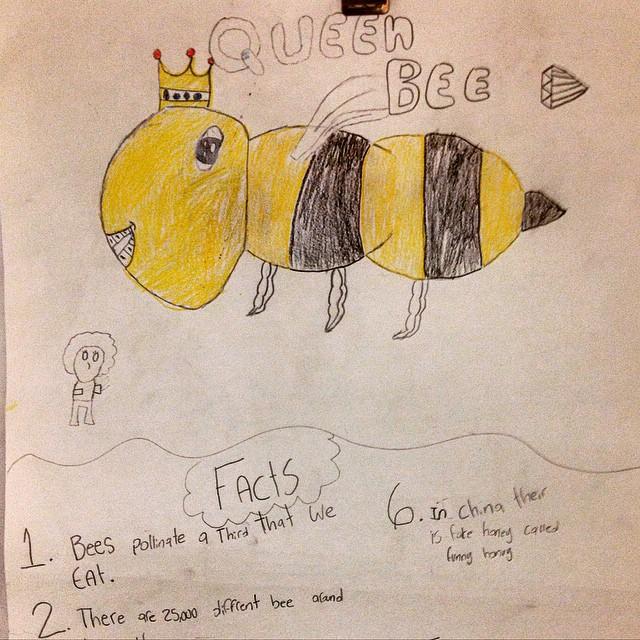 Bee Facts. #oneinthreebites #queenbee #beepublic #savethebees @christelhouse  (at Christel House Academy)