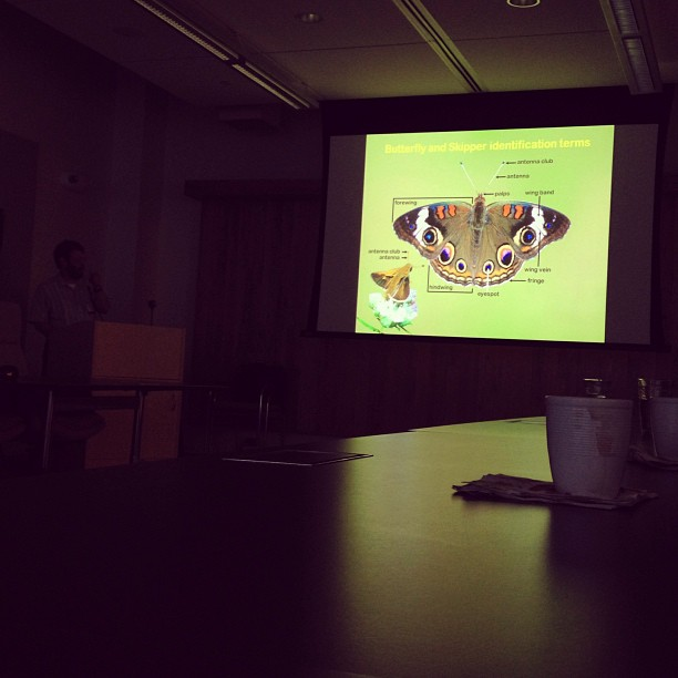 Tonight I learned a little something about butterflies.  (at Nature Conservancy)