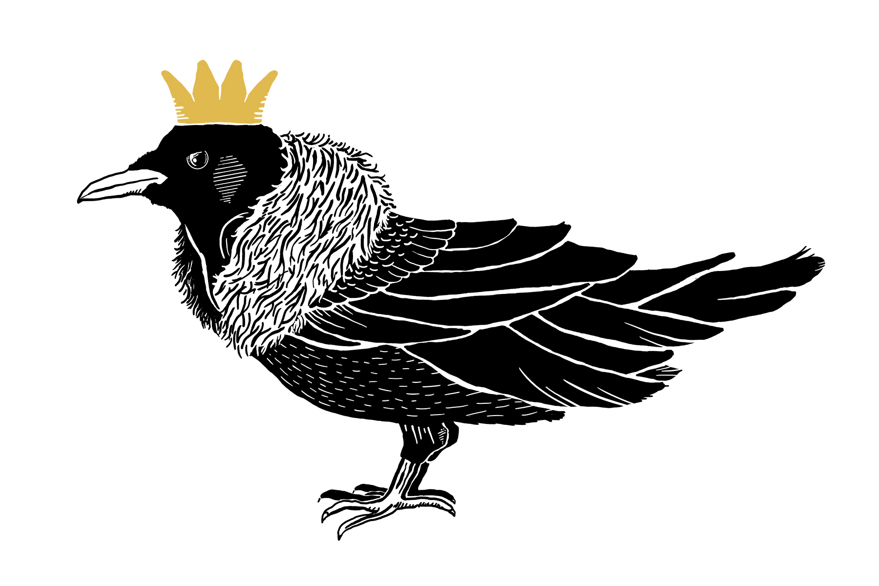 Snow King Crow