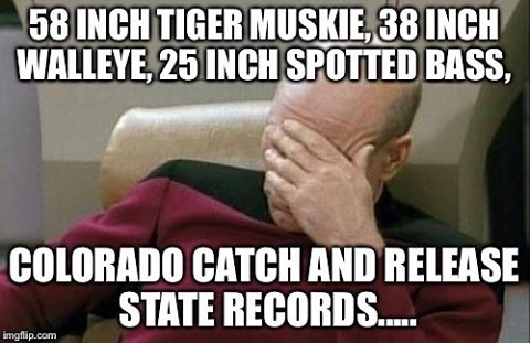 I don't meme often, but.... @coparkswildlife #fishing #staterecord #colorado #validity #worldrecord #integrity #verify #microcosm #walleye #fake #reallydude #meme #fixit