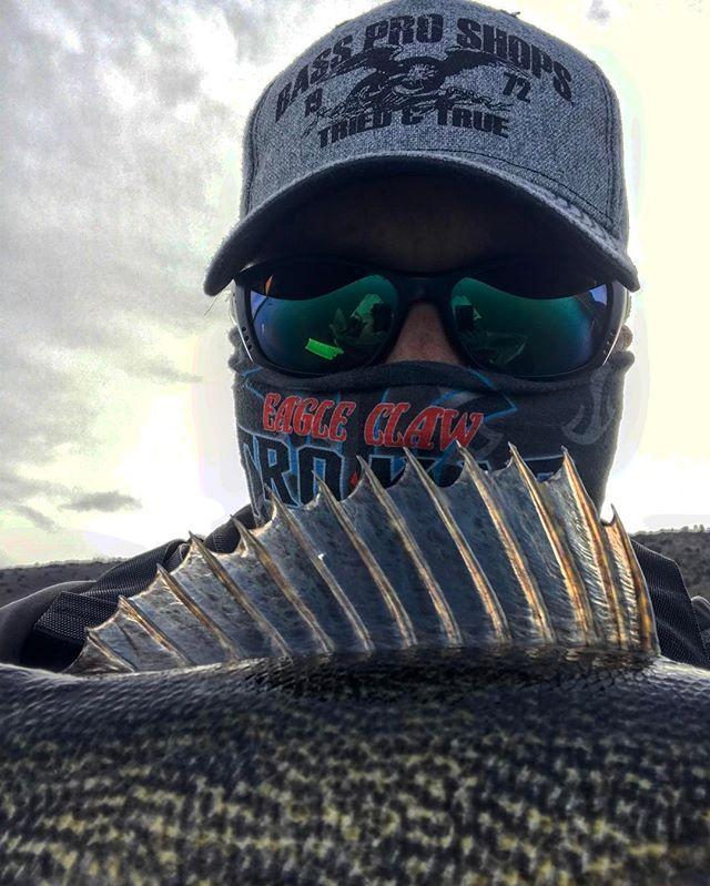 Another great day on the yak! #fishing #kayakfishing #colorado #hobie #hobiefishingteam #btfmfishing #bassproshops #eagleclaw #pikespeakoutfitter #ericalleephoto #sundayfunday #saugeye #walleyefishing #getoutside #outside #🎣