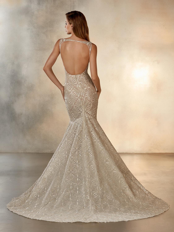 Atelier_Pronovias_2020_collection_wedding_dress__Starlight_back_view.jpg