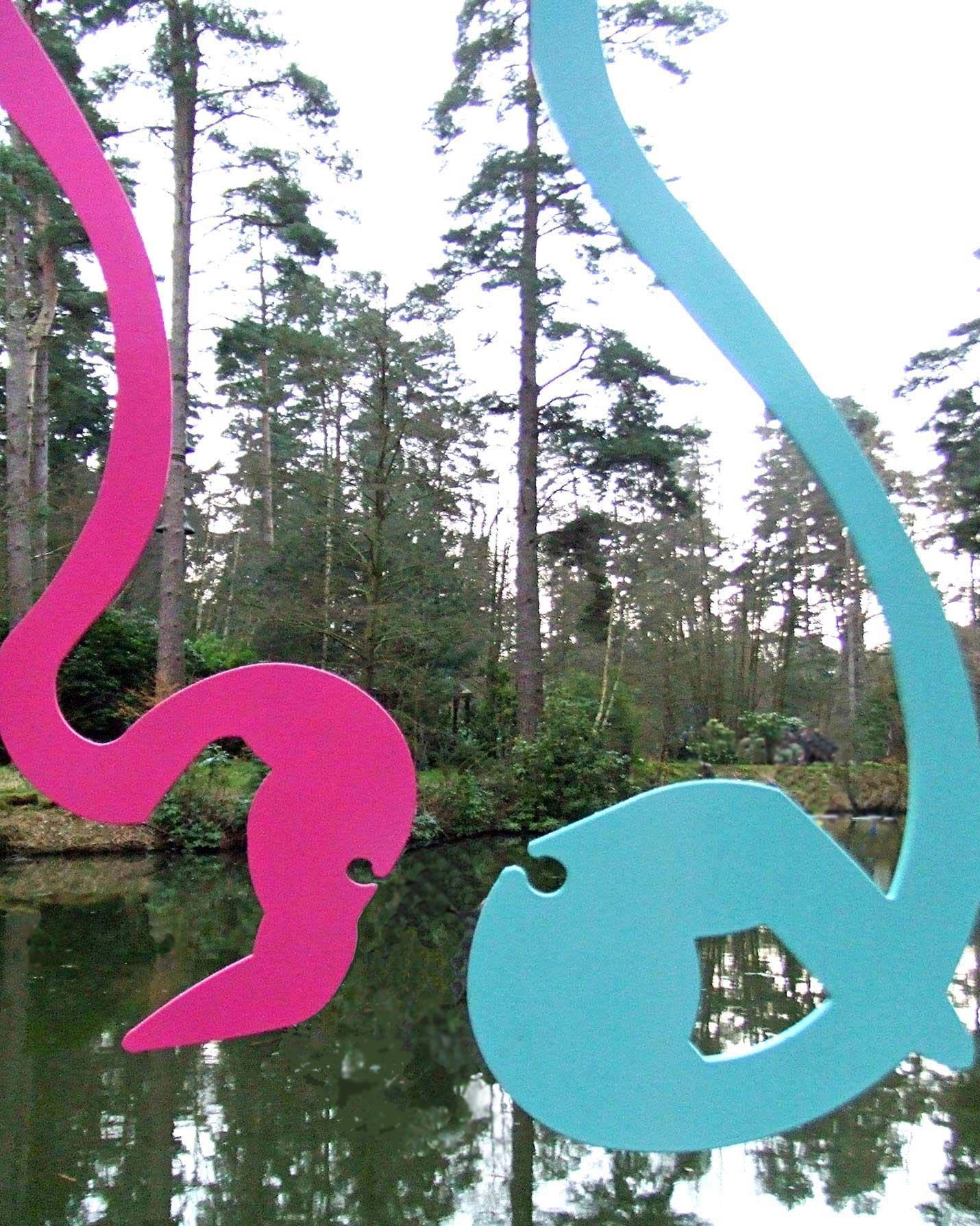Flamboyance of Flamingos  ©   Text☰