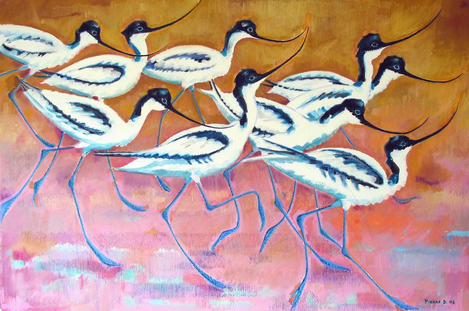 Avocets   ©    Text☰