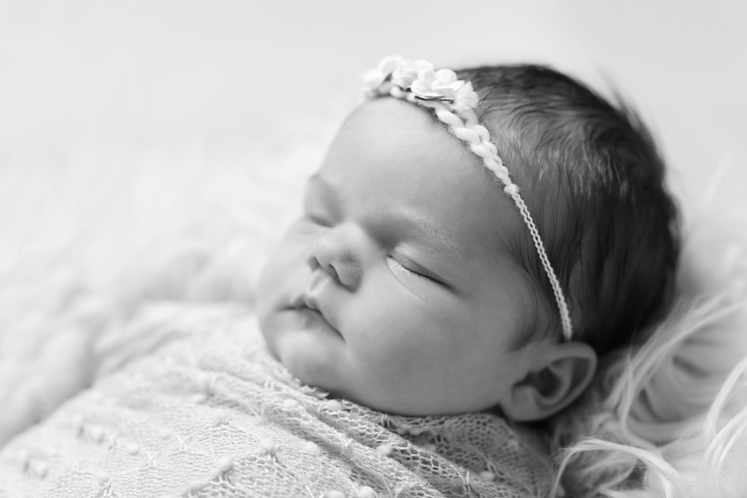 Karen Kimmins newborn photographer, Wellington, Taunton..jpg