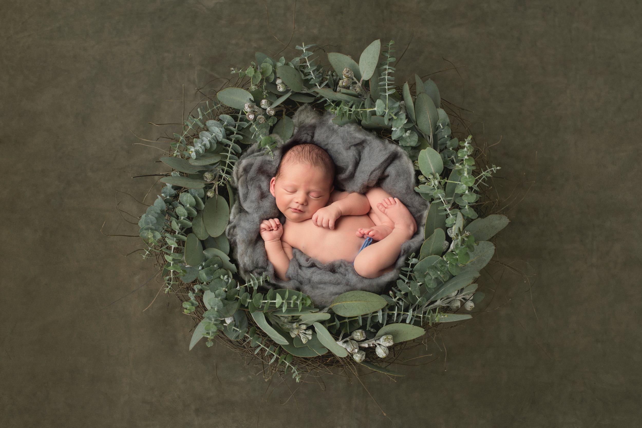 Karen Kimmins Newborn Photography. Wellington, Taunton, Somerset..jpg