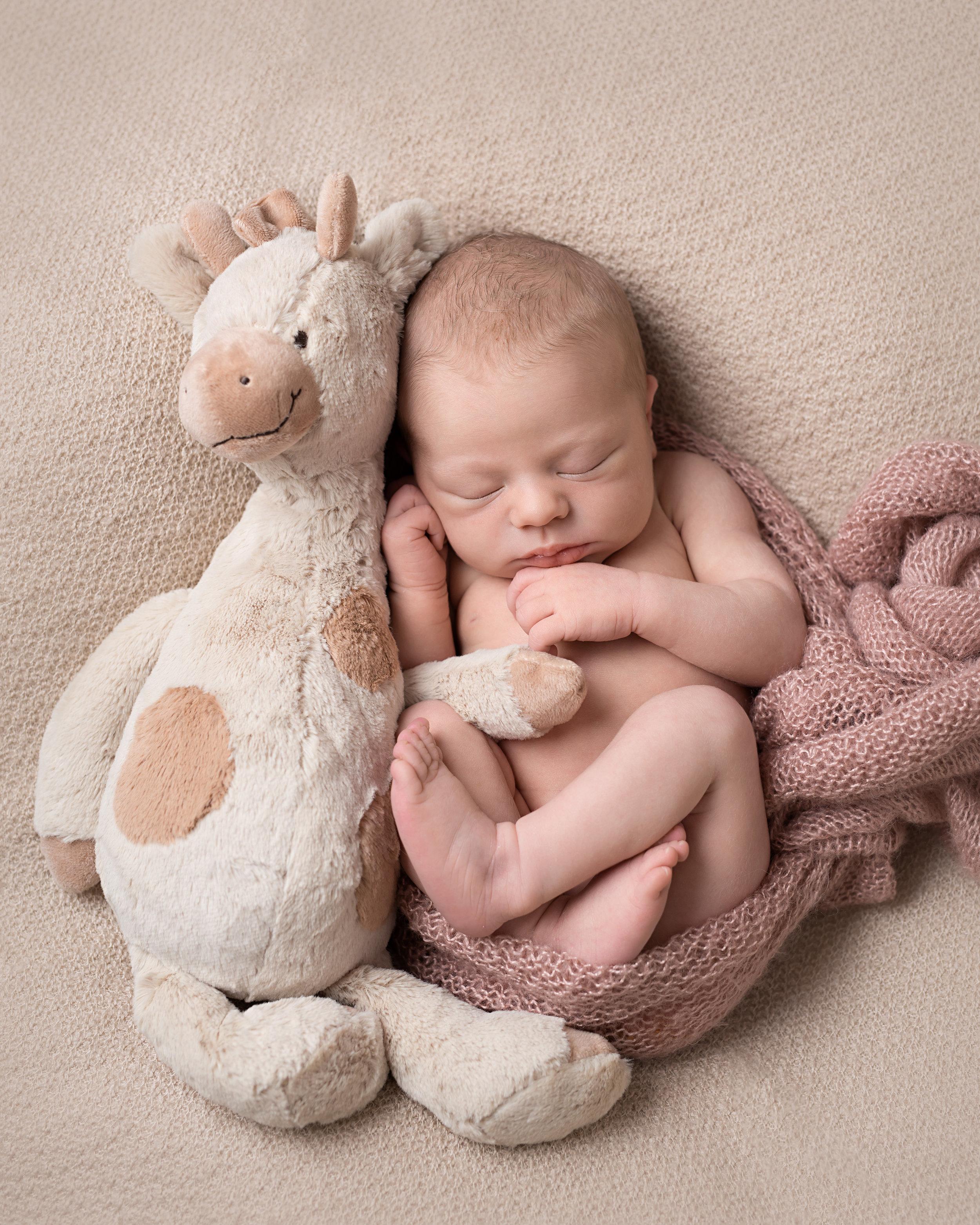 Karen Kimmins newborn Photography10.jpg