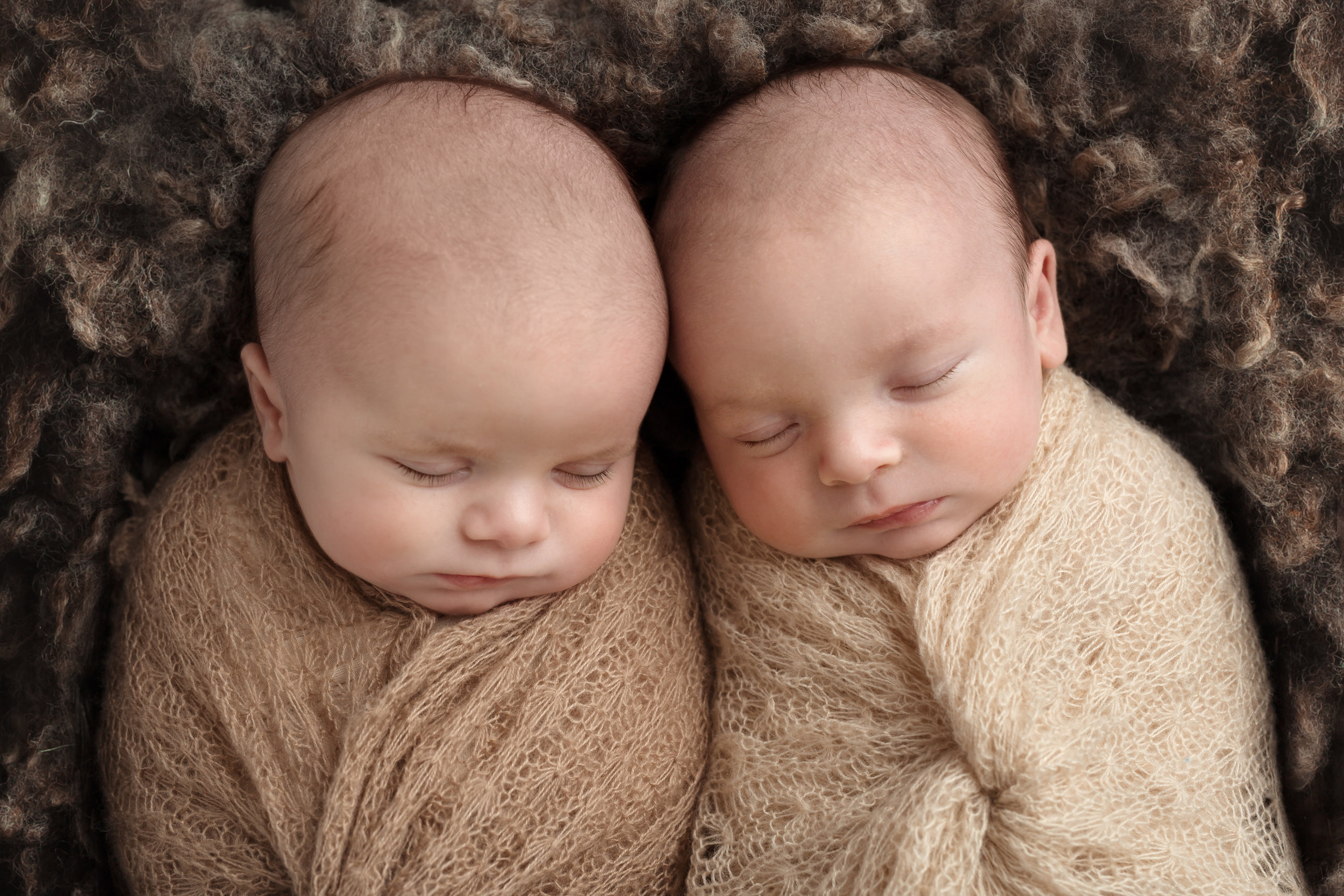 Professional newborn Photographer, Wellington, Taunton, Exeter, Somerset..jpg