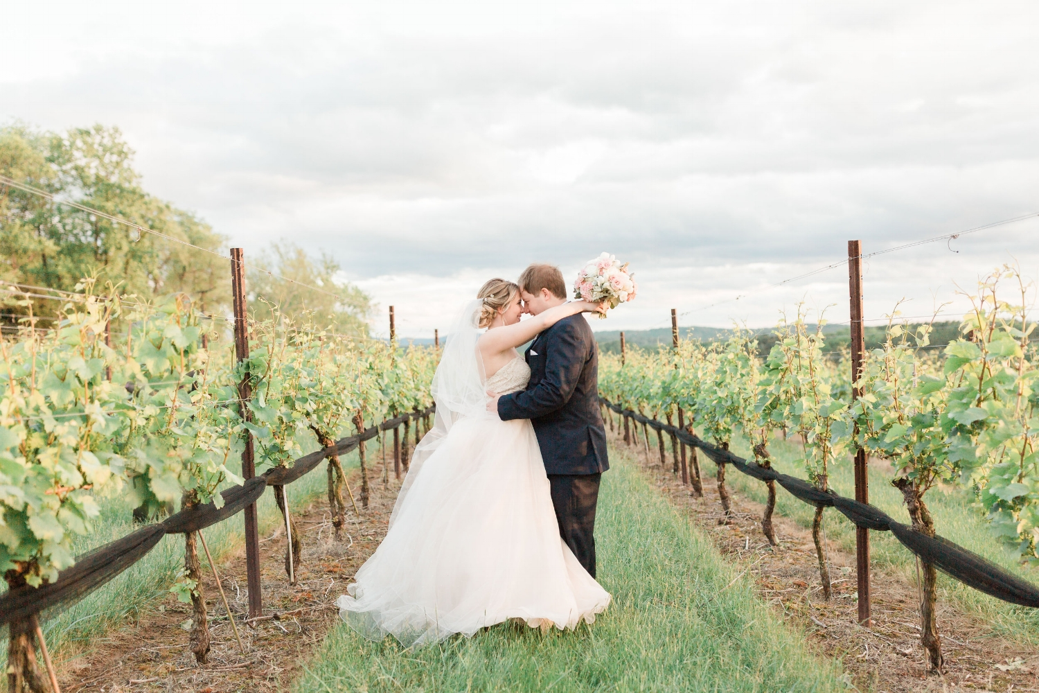 As an artist, I think of how the gray skies make this picture come alive in a way that would be impossible if the sun was shining brightly and the vineyard overtaken by blue skies. This pic is one of my favorites!