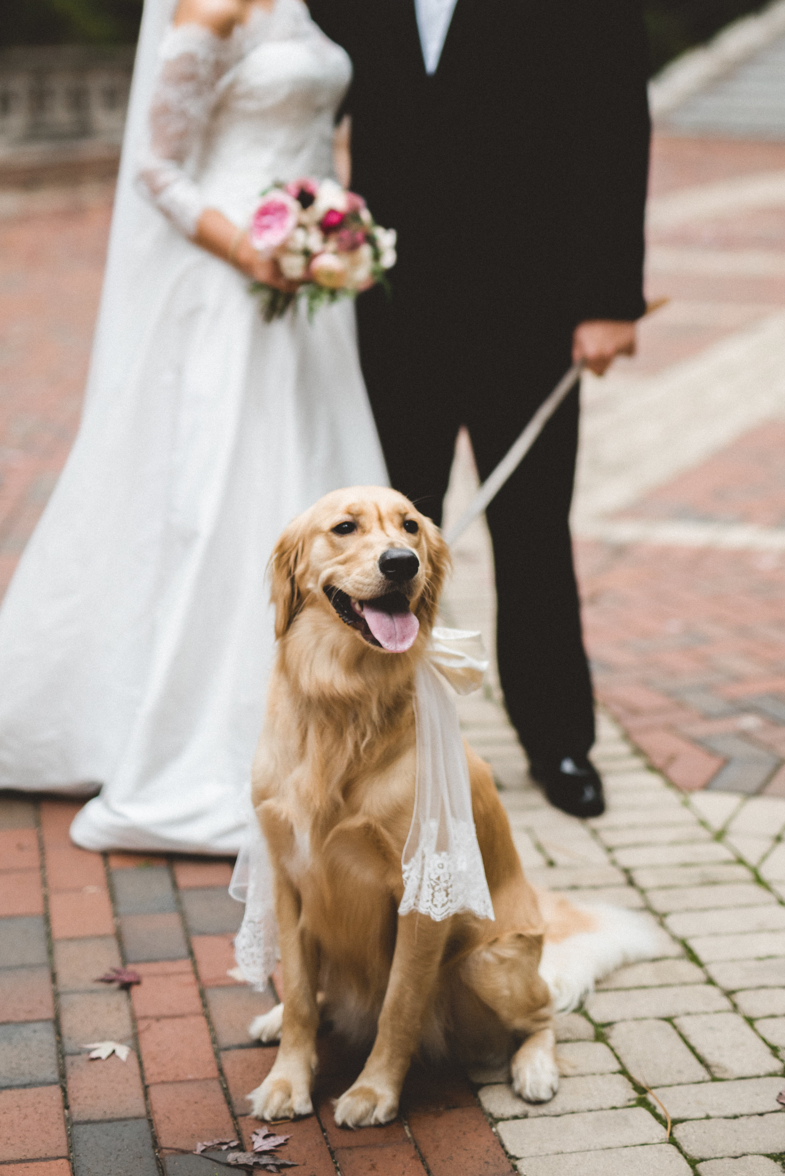 AKC-hunt-maffett-wedding-10-14-17-0551 (2).jpg