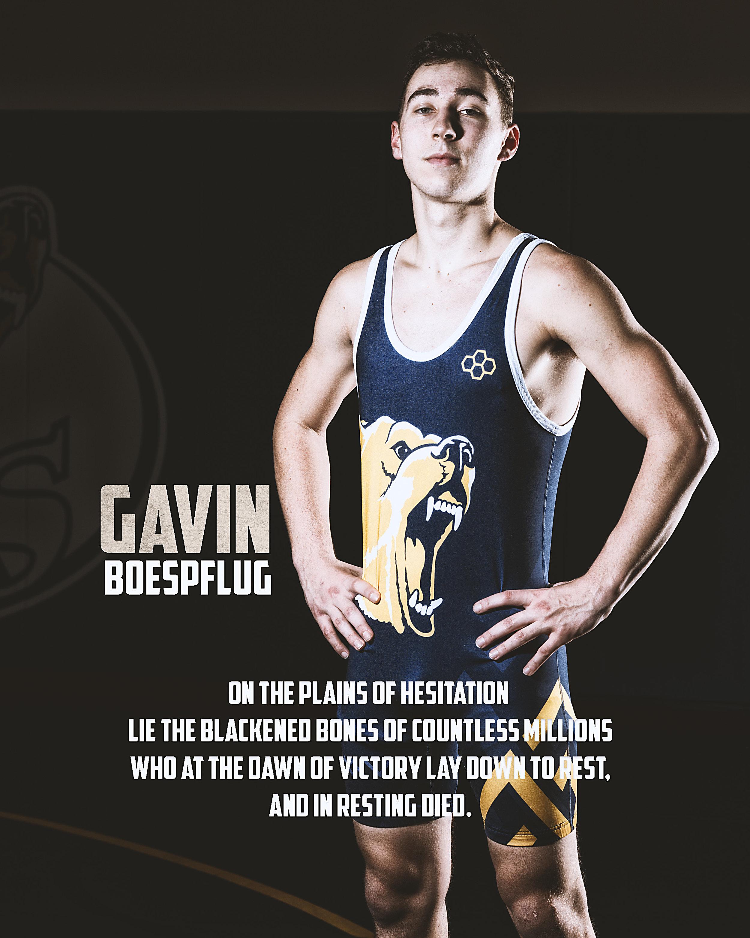 Gavin.jpg
