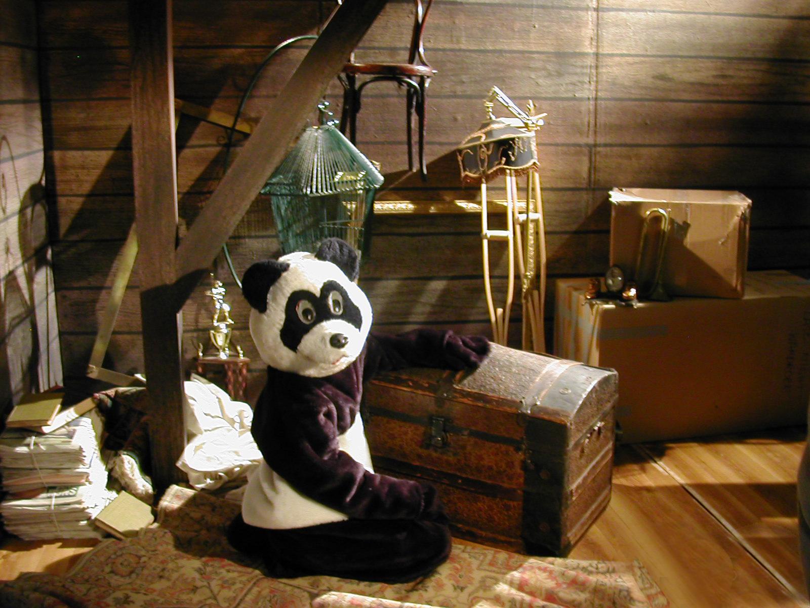 pandapornattic.jpg
