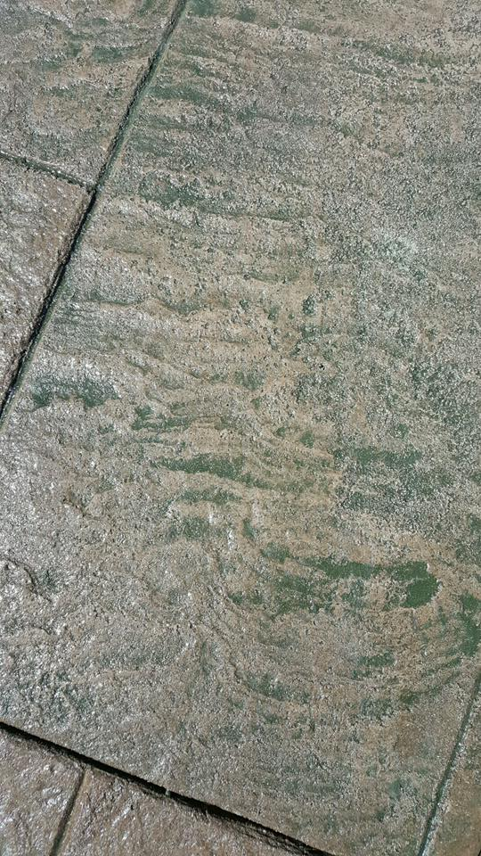 walkway 9.jpg