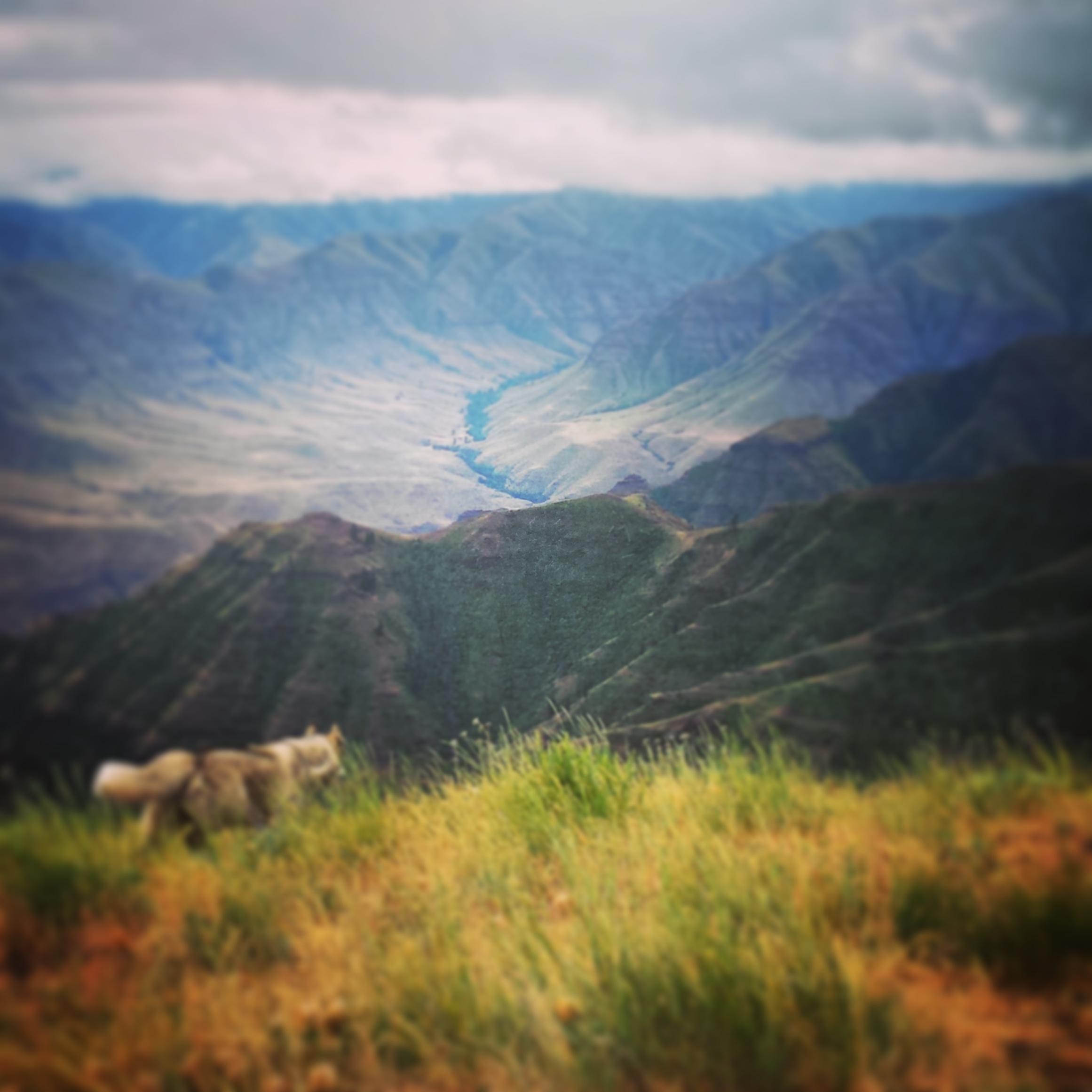 JLJ Wilderness Hikes Challenge (35).jpg