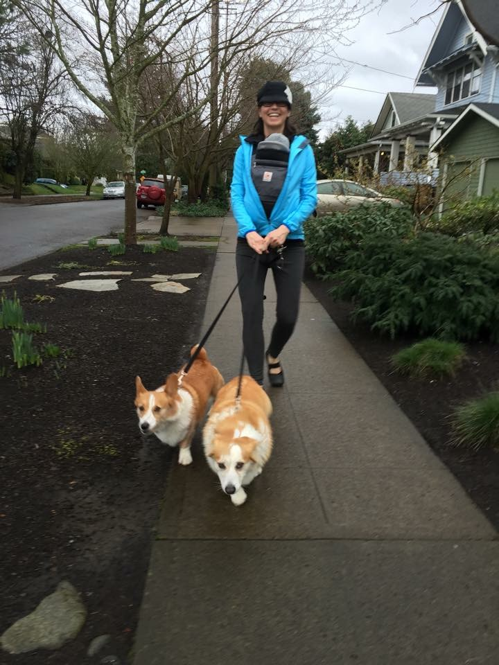 Neighbor Adrian Brown takes newborn son Miles for his first walk, escorted by their corgis, Sully (named for the Gulch)and Fiona.