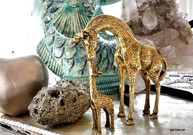 Green your living with vintage finds, as this absolutely charming set of vintage brass giraffes, there are many items that were made to weather multiple lifetimes! . . . . . . . . . . #reusefunishing #vintagefinds #vintagetreasures #recycle #greenchoices #ethicalconsumer #ethicalconsumerism #giraffs #sustainable #greendecor #interiordecor #interiordecorideas #greenpractices #loveanimals #decor #zerowaste