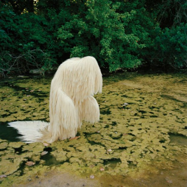 Silky Straight in Swamp