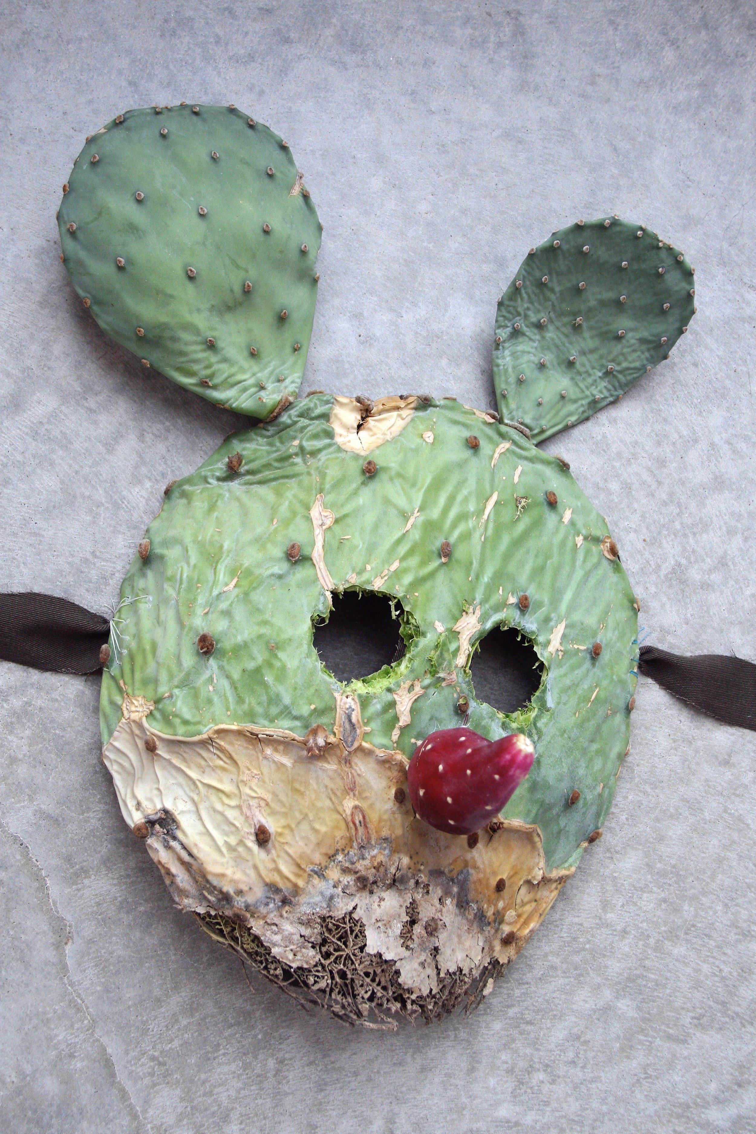 Prickly Pair Mask.jpg