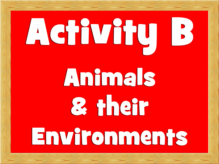 Activity B - Animals and their environments.jpg