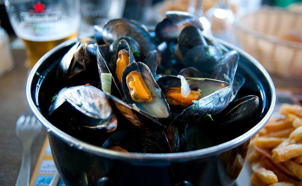 Plastic found in pristine ocean mussels
