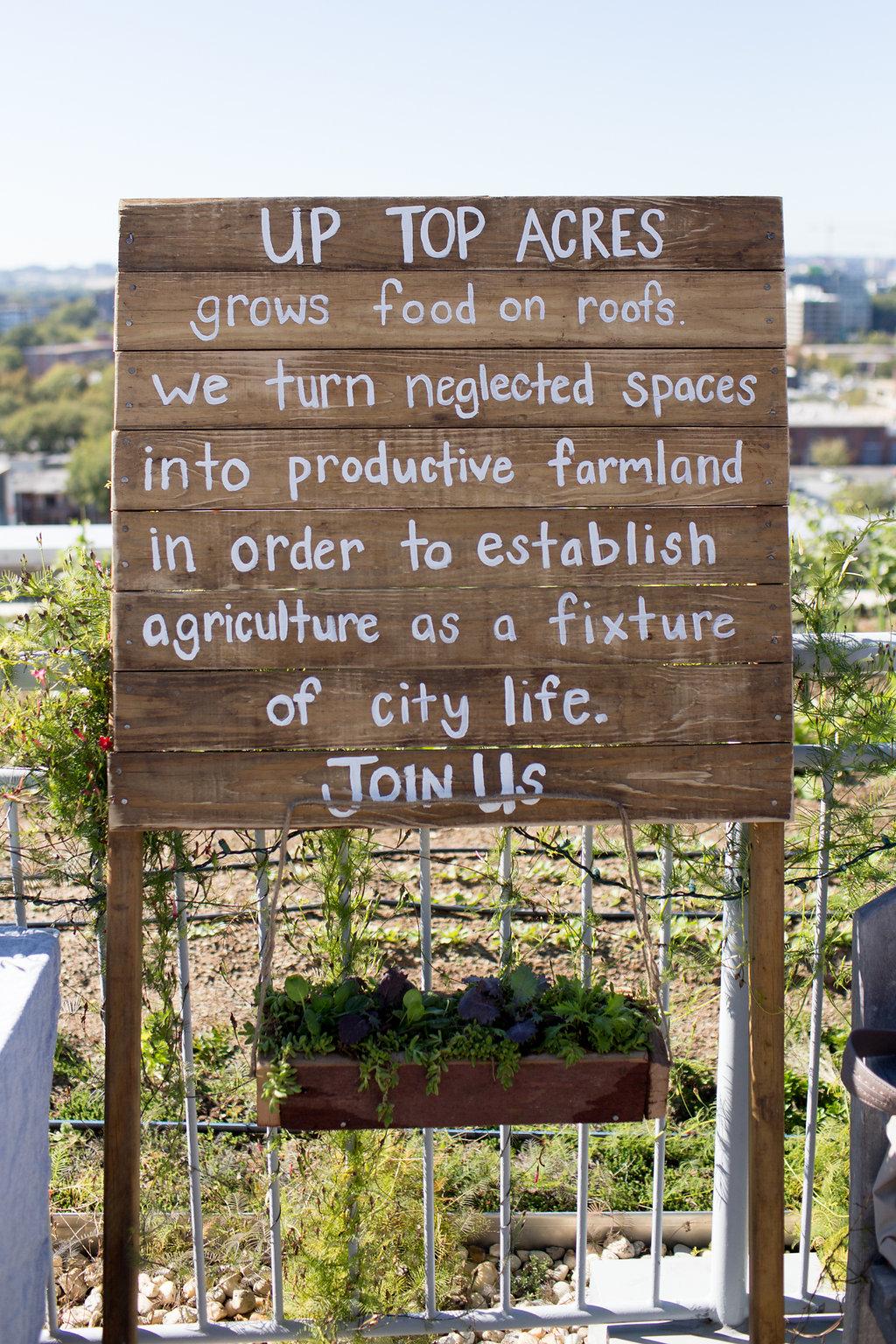 Celebrating one year of rooftop gardening. (Photo by Jennifer Chase)