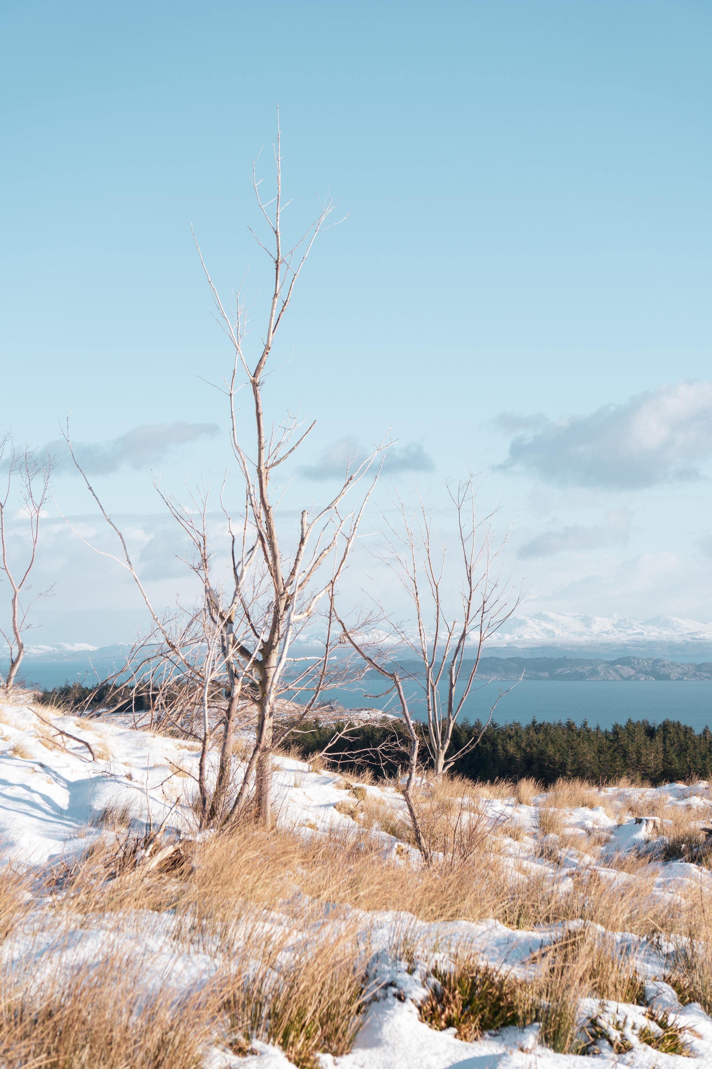 Isle-of-Skye-Winter-2019-Trotternish (20).jpg
