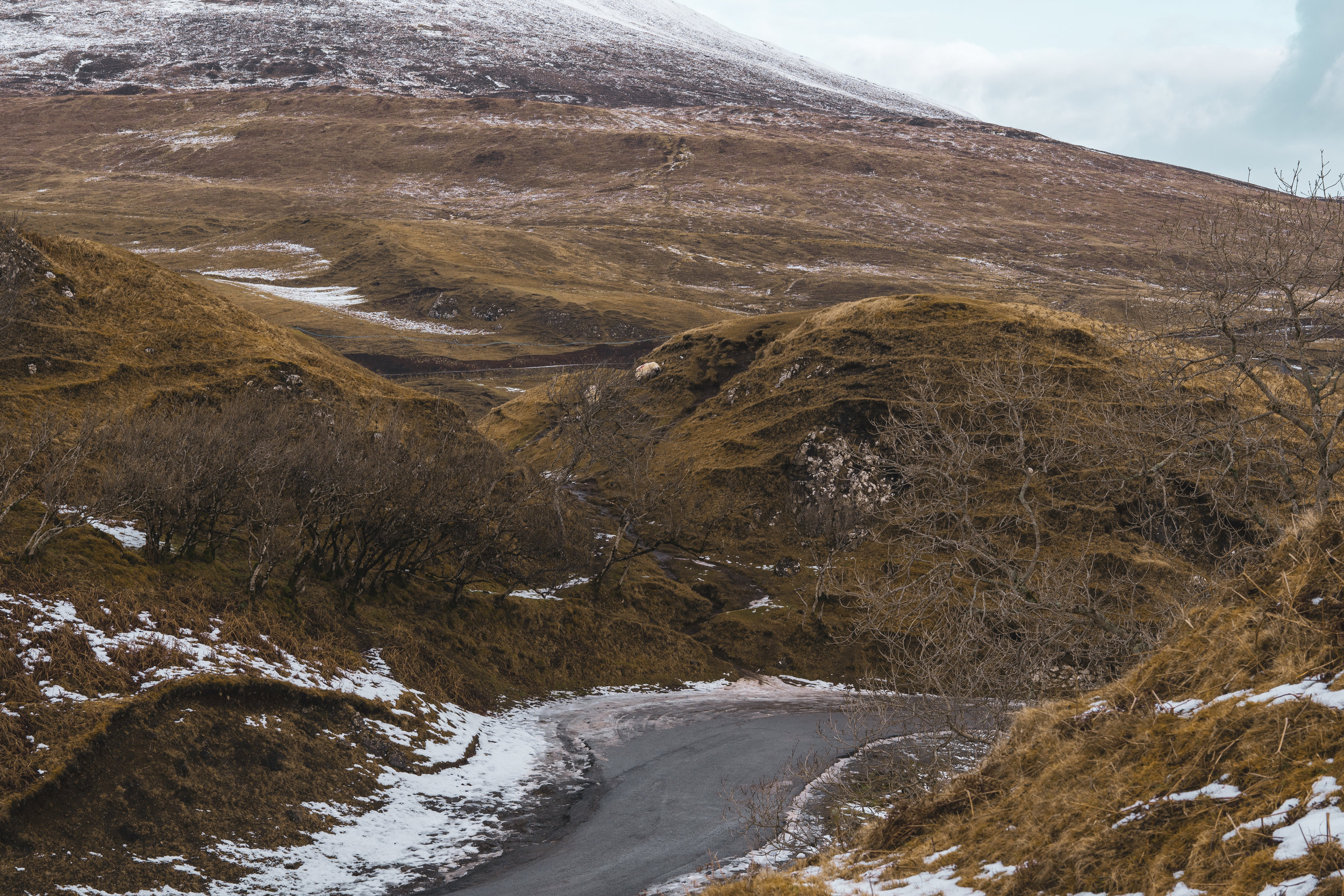 Isle-of-Skye-Fairy-Glen-und-Braes (17).jpg