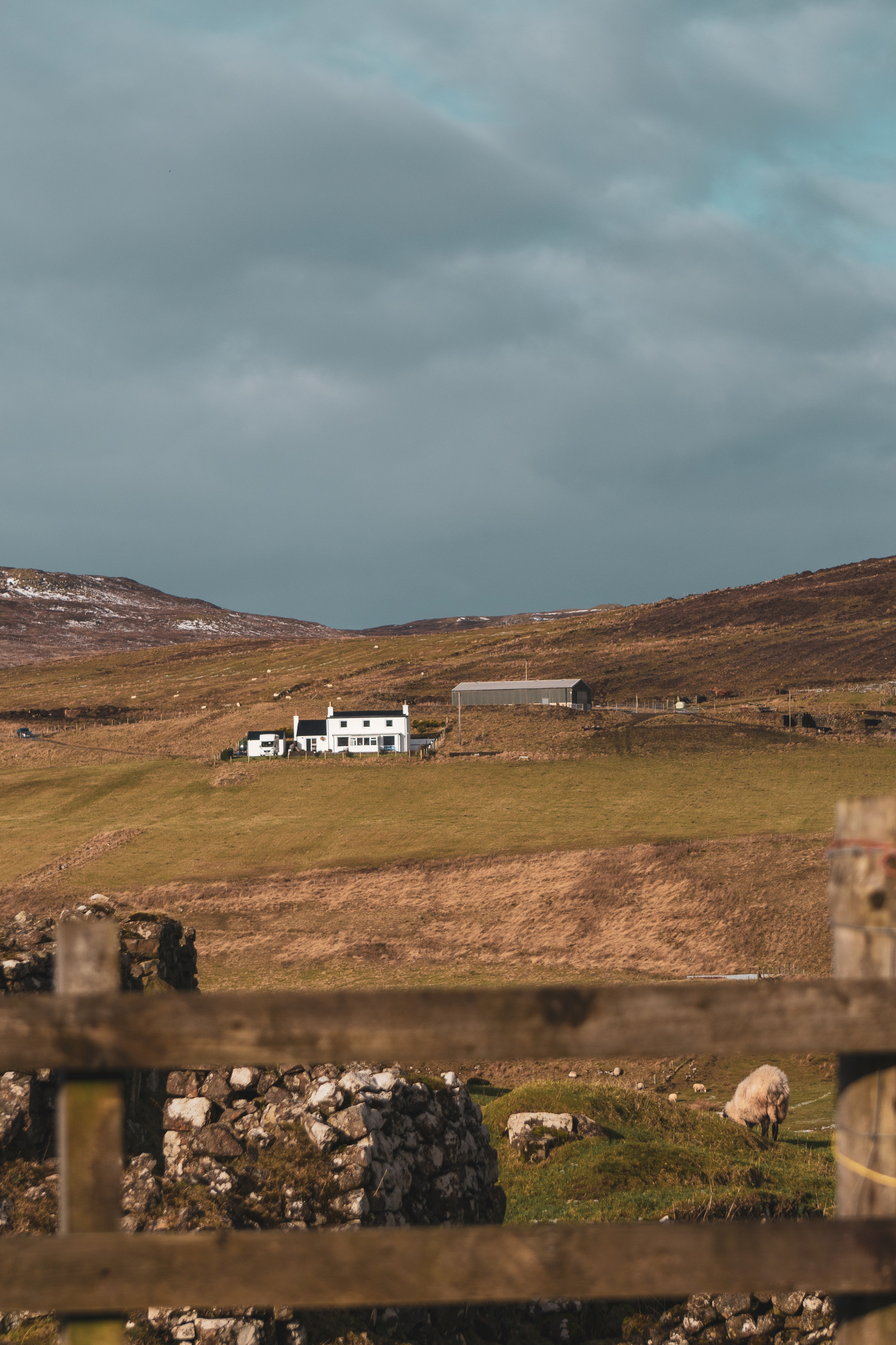 Isle-of-Skye-Fairy-Glen-und-Braes (22).jpg