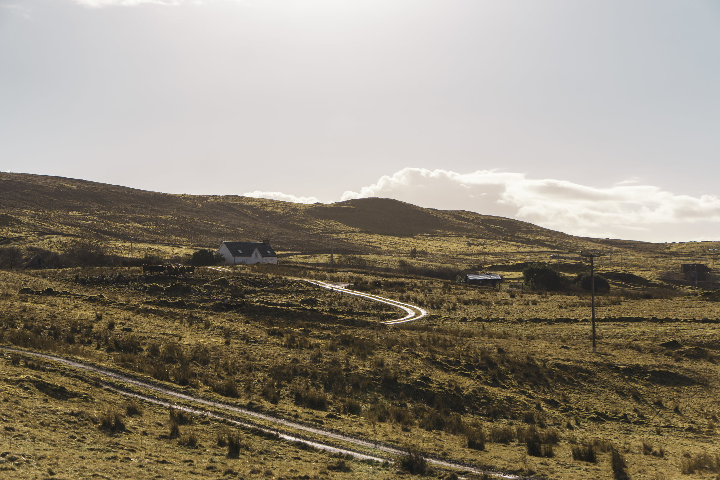 Isle-of-Skye-Fairy-Glen-und-Braes (26).jpg