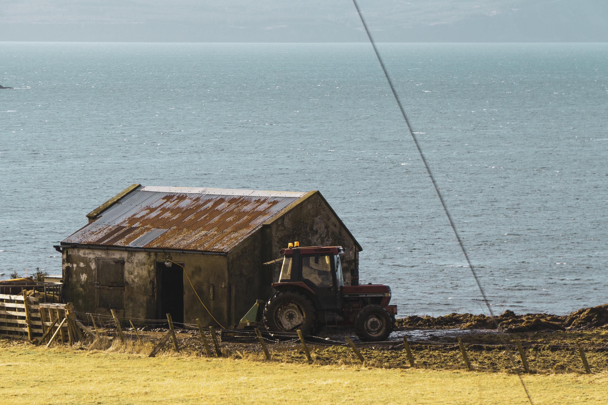 Isle-of-Skye-Fairy-Glen-und-Braes (28).jpg