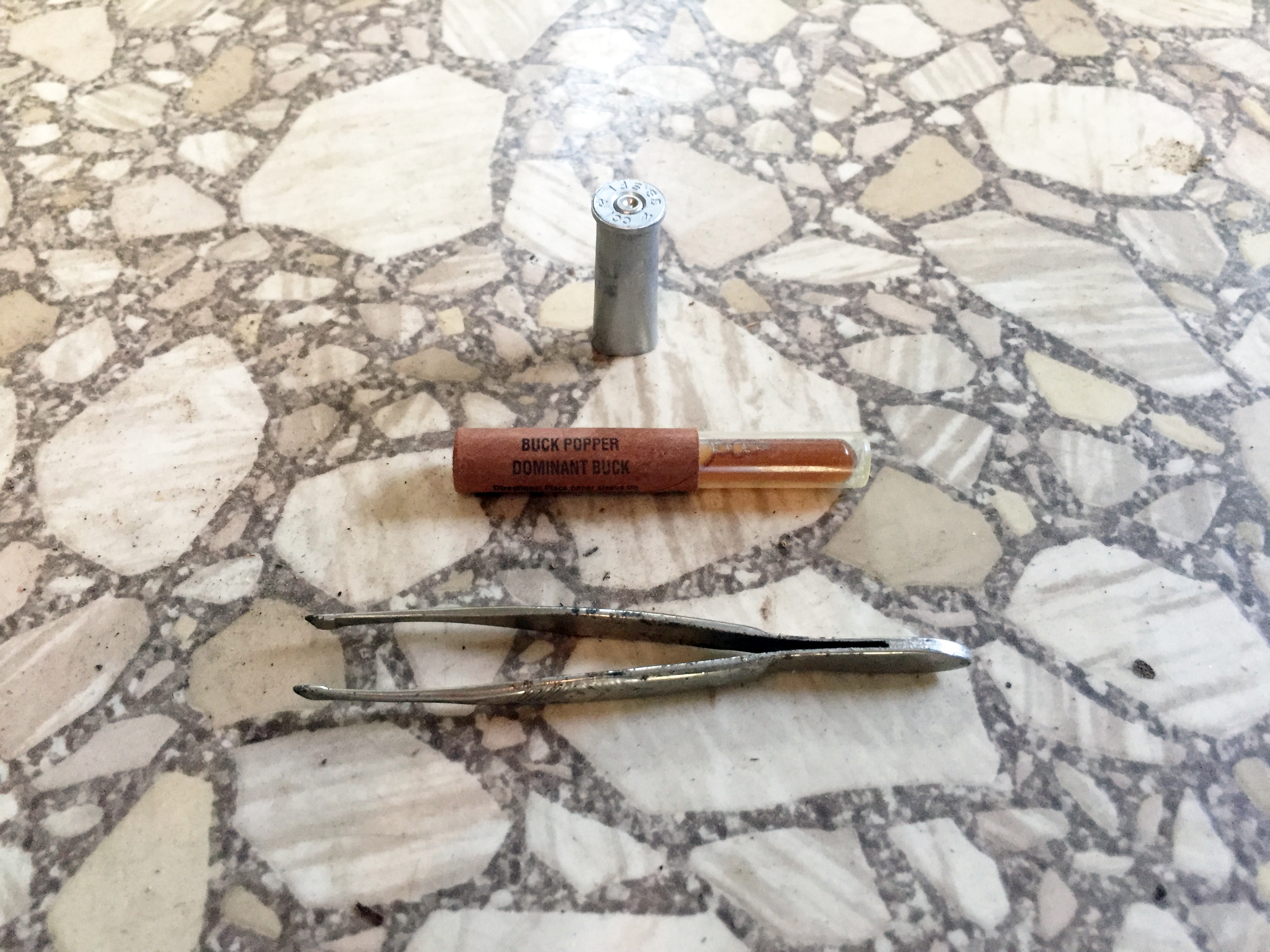 A bullet casing, an I have no idea what (obviously the official scientific name), and some old tweezers.