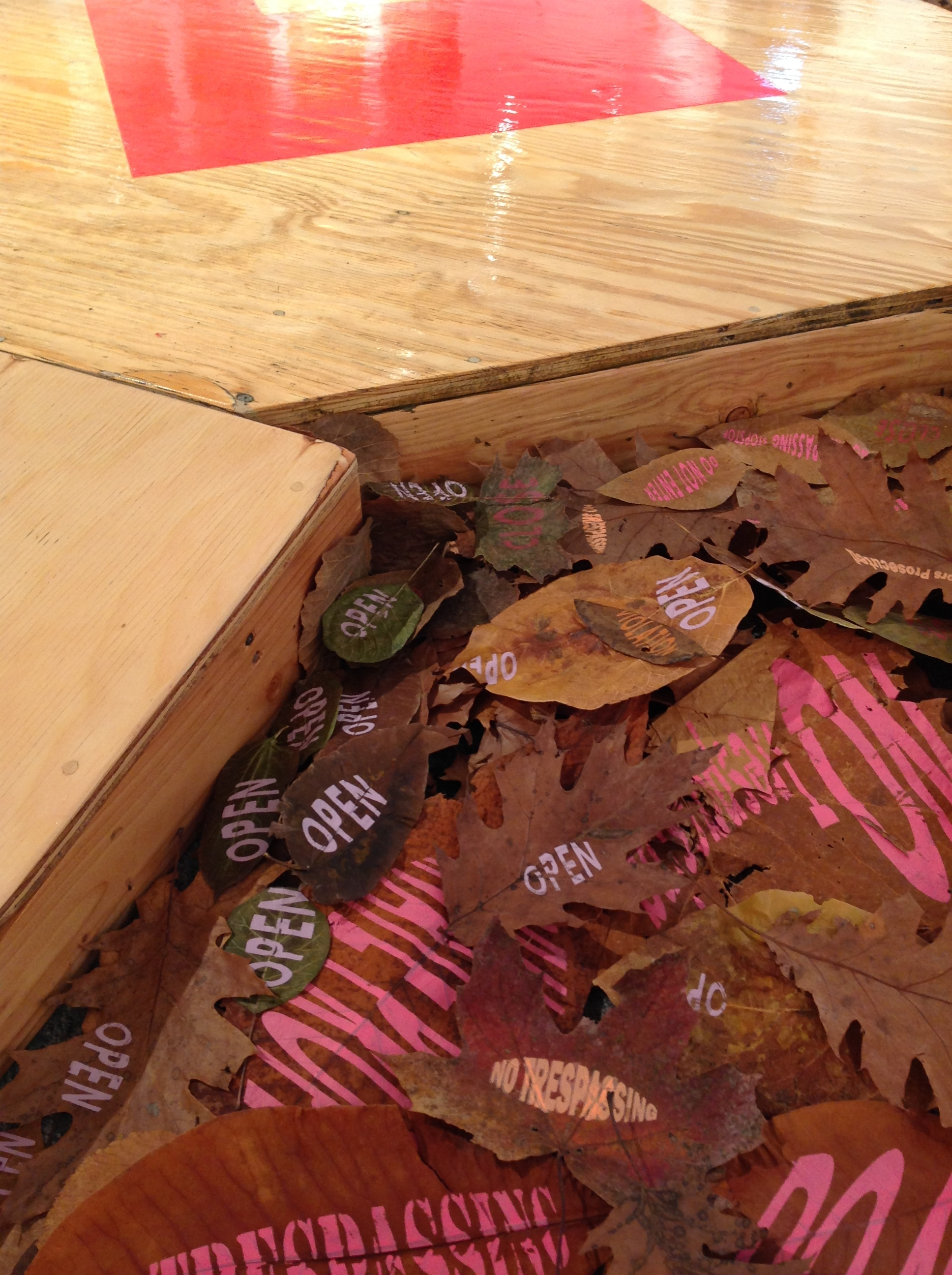 "Detail  ""Plot &Lot""  Wood, spray paint, screenprint on leaves  2018"