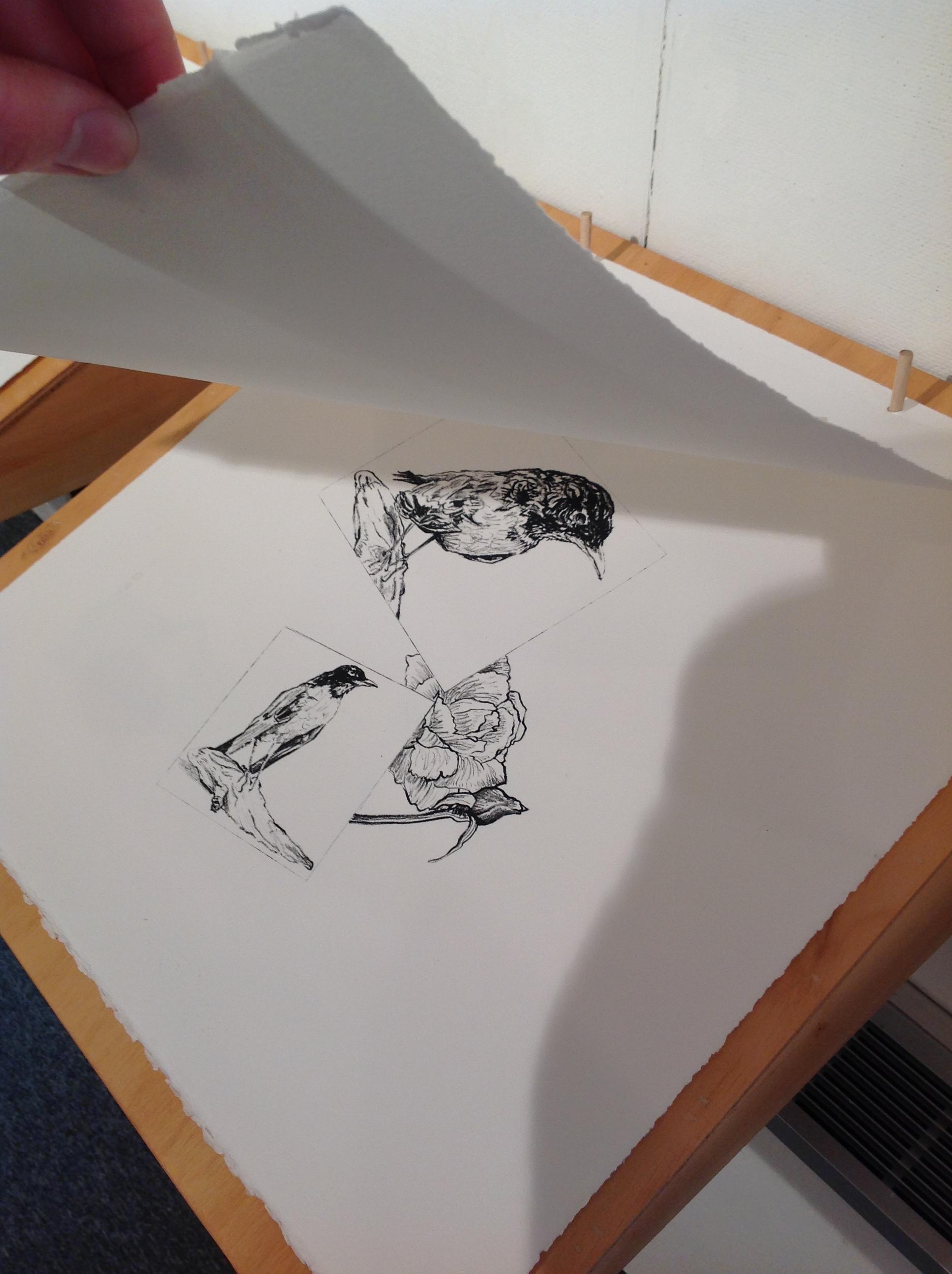 "Detail  ""Ephemera Books"" I, II, III  Lithography, chine colle, wood  2018"