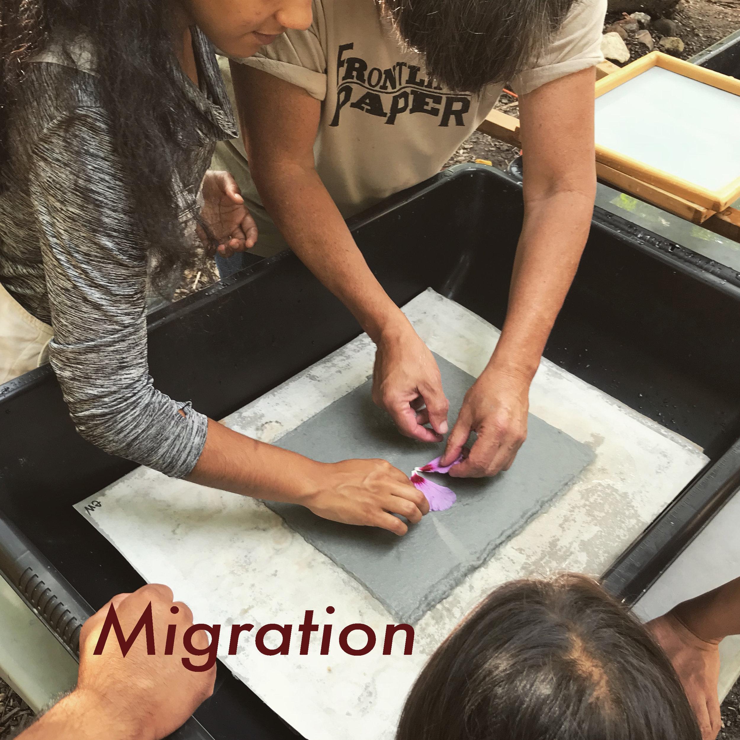 Migration image 2.jpg