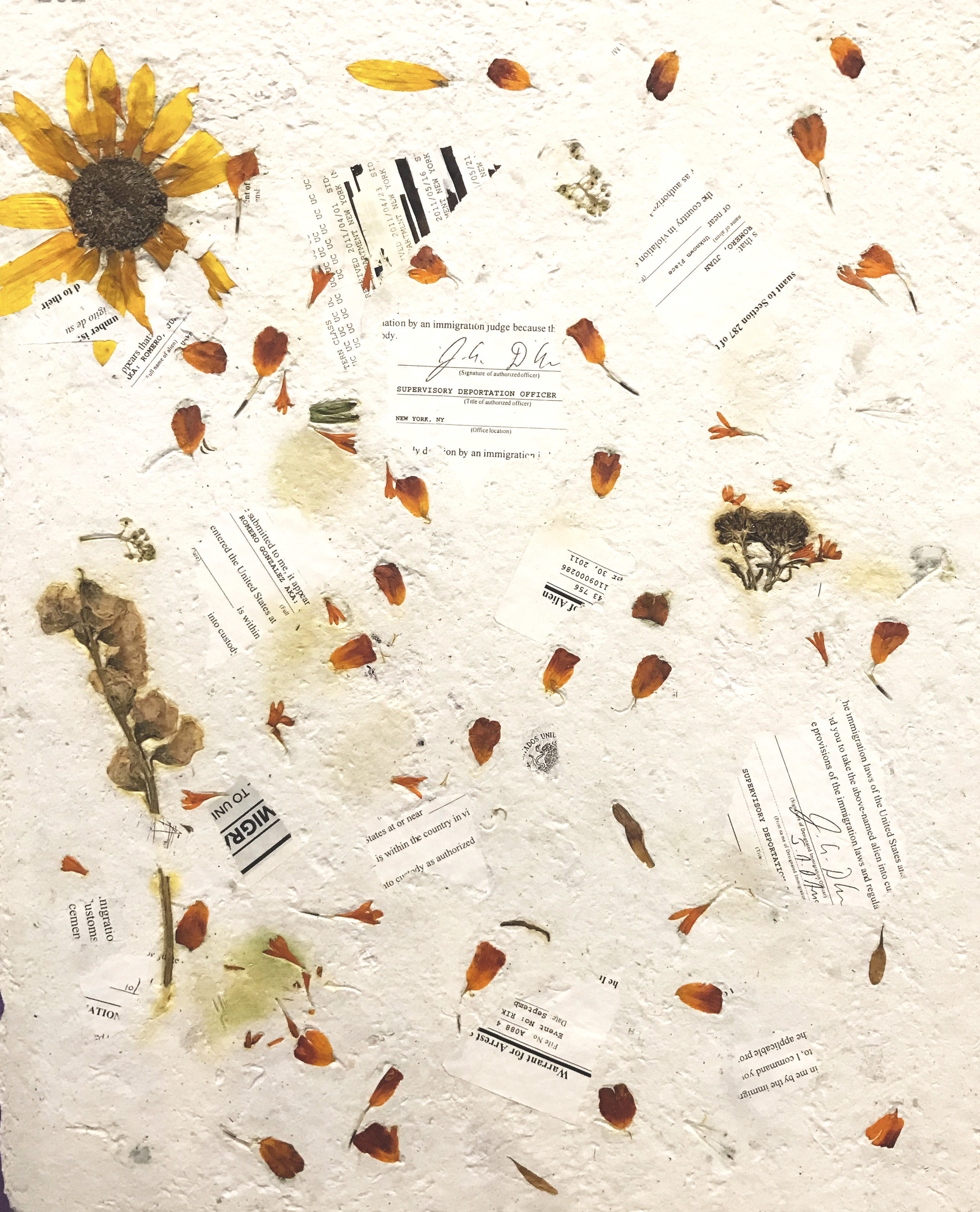 Artwork made in the first phase of the project by:  Lupita R. - handmade paper from abaca, deportation documents, plants from South Bronx, and military uniforms