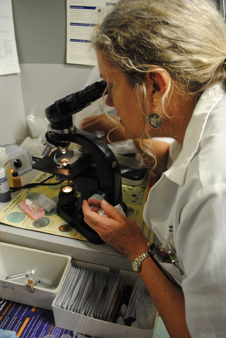 Doctor Emily Taylor viewing a specimen through a microscope