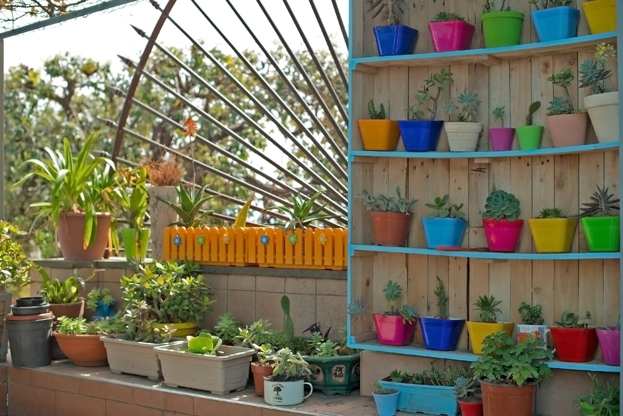 ecohostelfloreale-botanic-garden.jpg