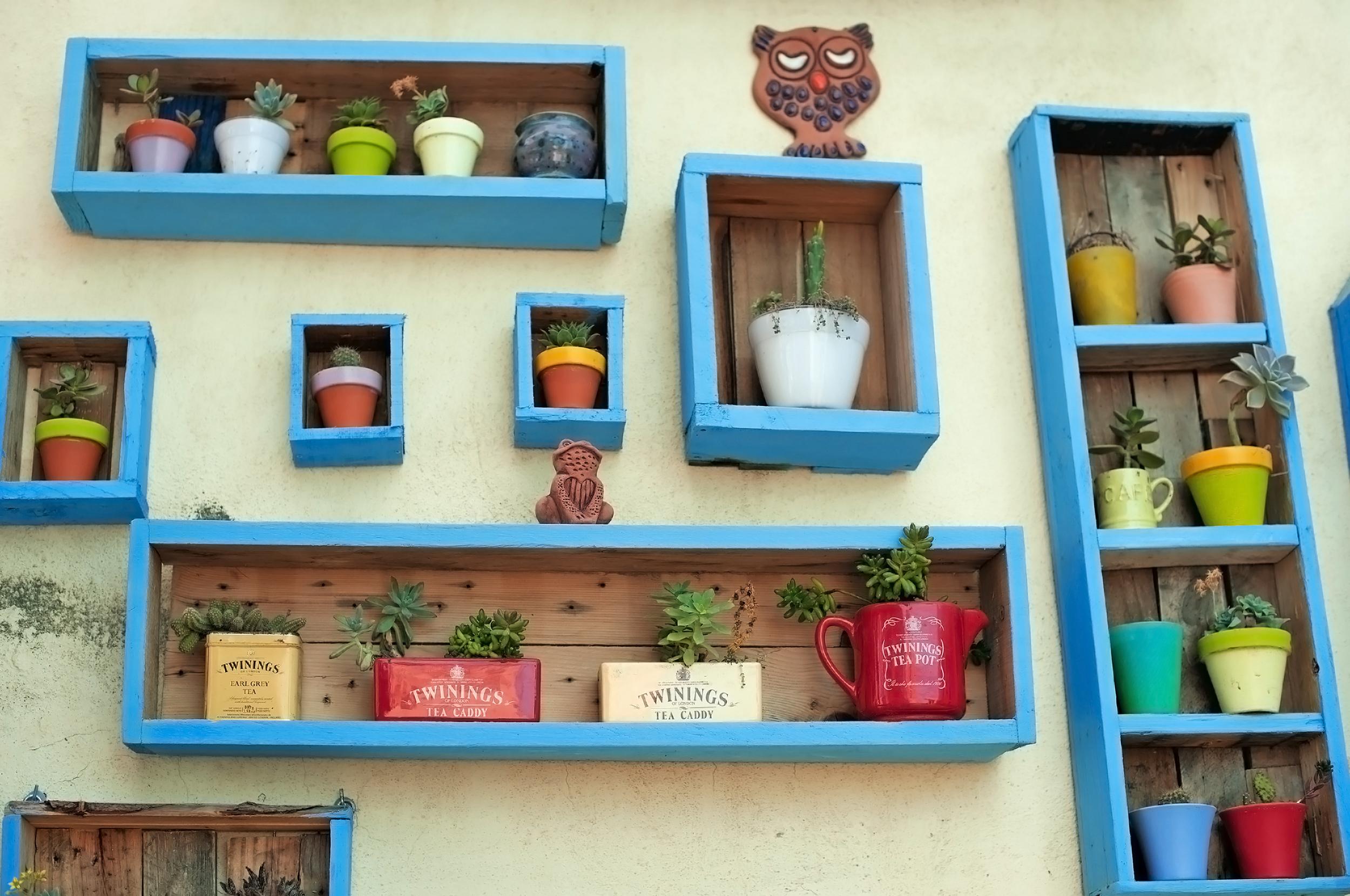 botanic-garden-2.jpg