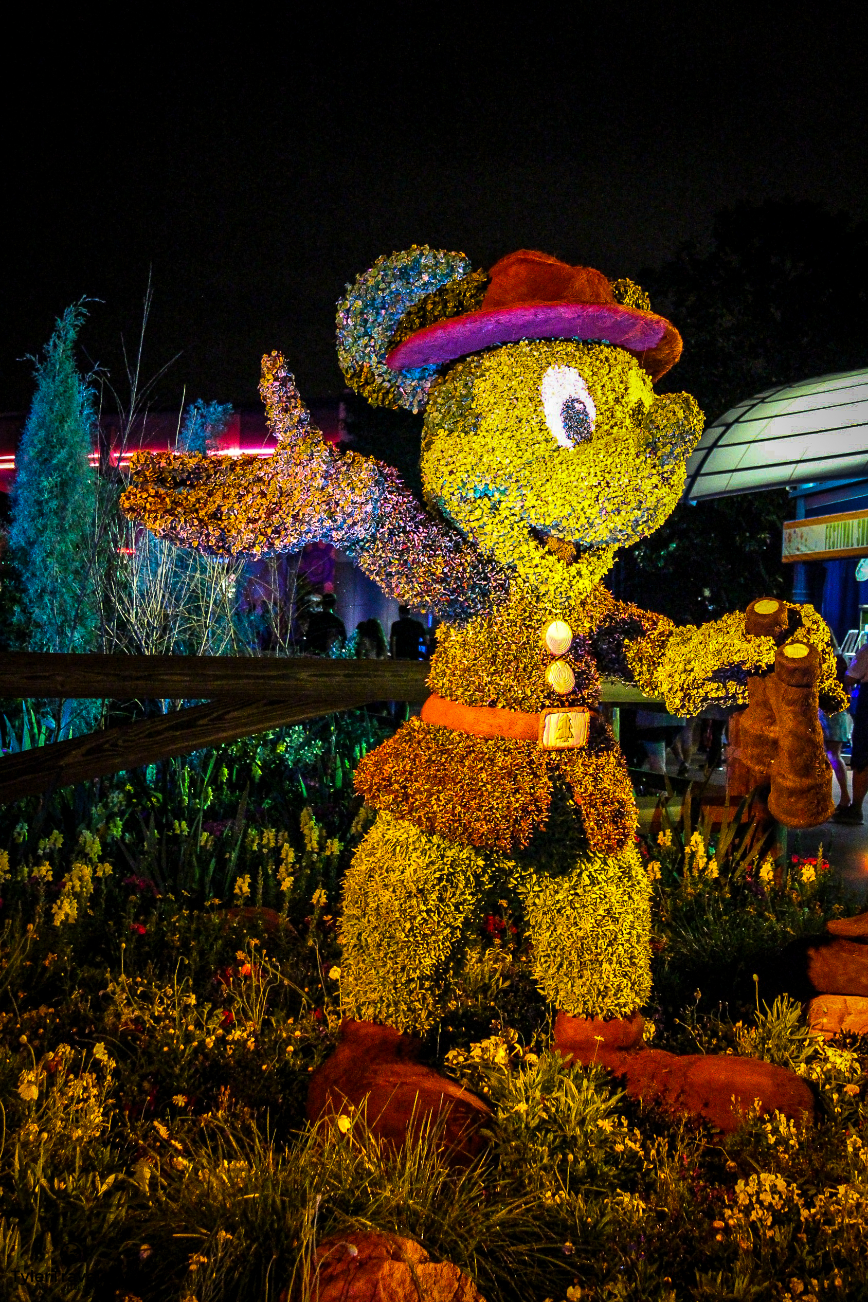 Disney Stock Photo-108.jpg