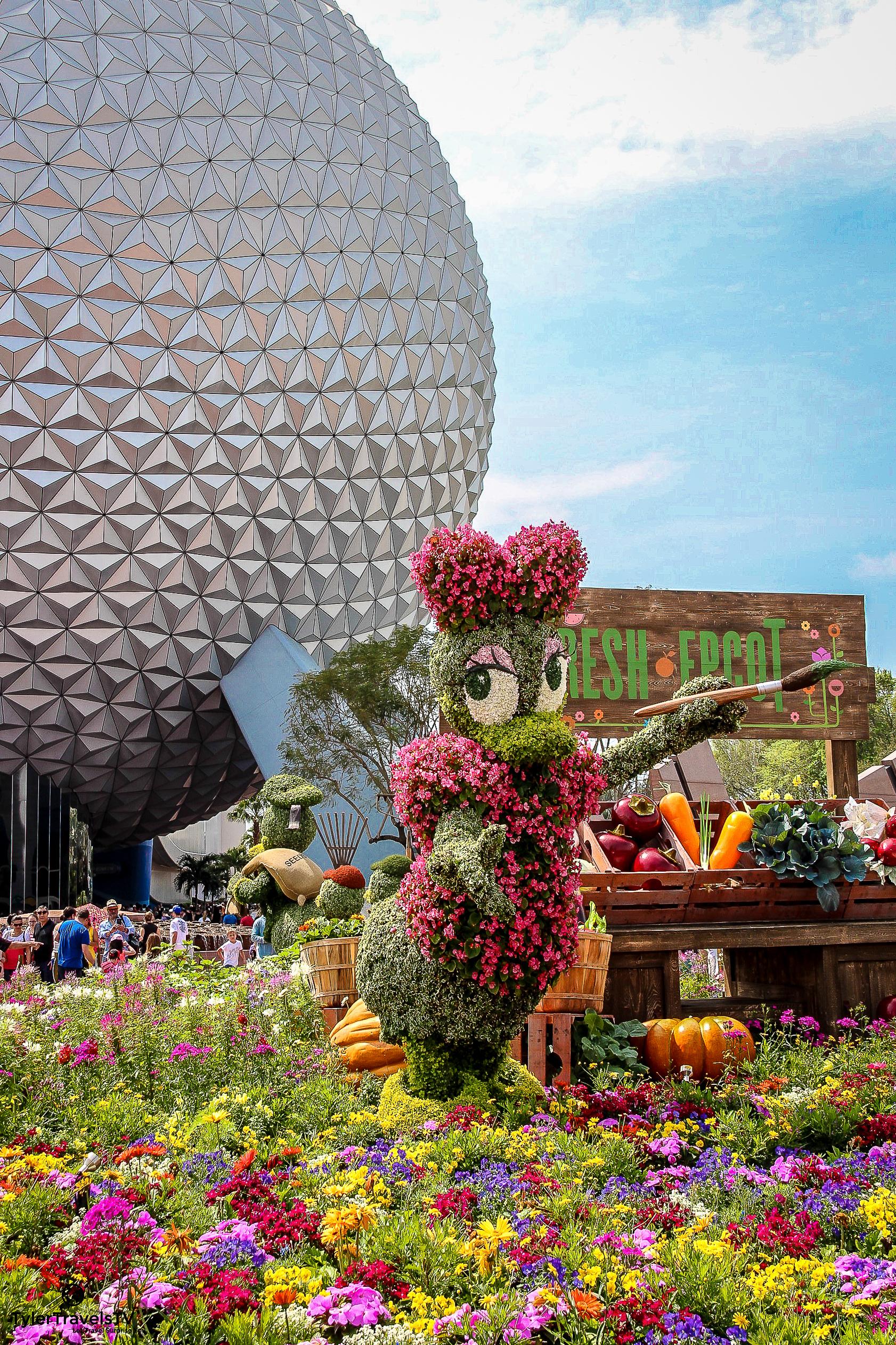 Disney Stock Photo-114.jpg