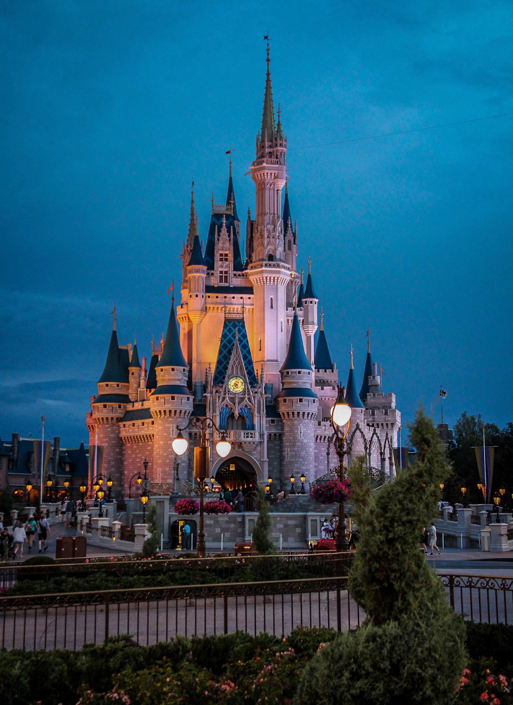 Disney Stock Photo-111.jpg