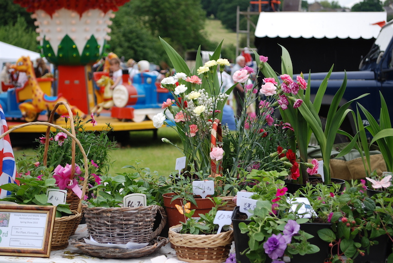 Stalls - Plants, bottles, cakes and more...
