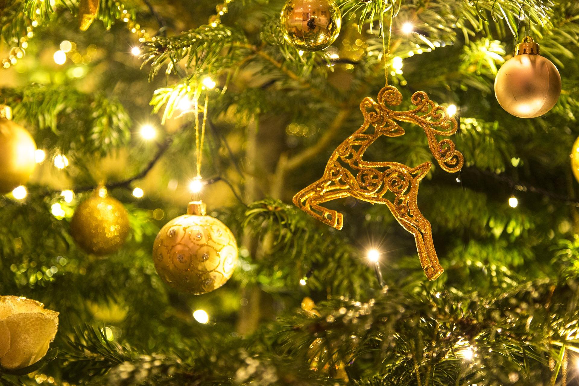 christmas-1849263_1920.jpg
