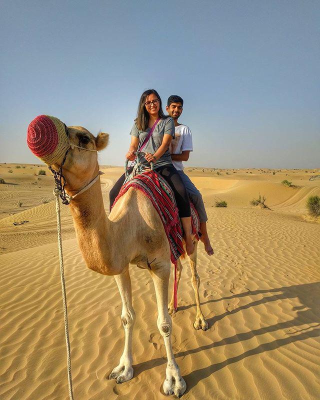 Getting through hump day like... . . . . . #camel #jemel #desert #humpday #dubai #MyDubai #UAE #Desertsafari #Heat #camelride #travel #travelblogger #travelstyle #travelstagram #travelphotography #nature #sand #traveller #travelling