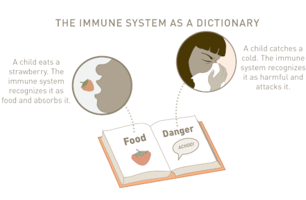 ImmuneSystem_Dictionary.png