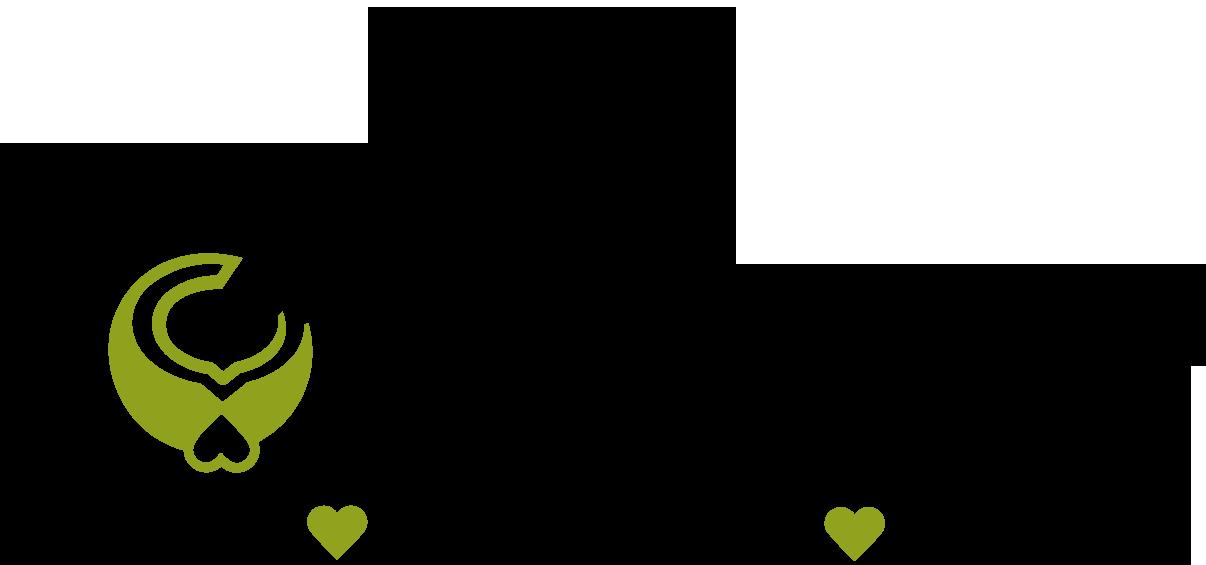 locanut_logo.png